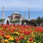 Festival des Mille et une tulipes à Istanbul