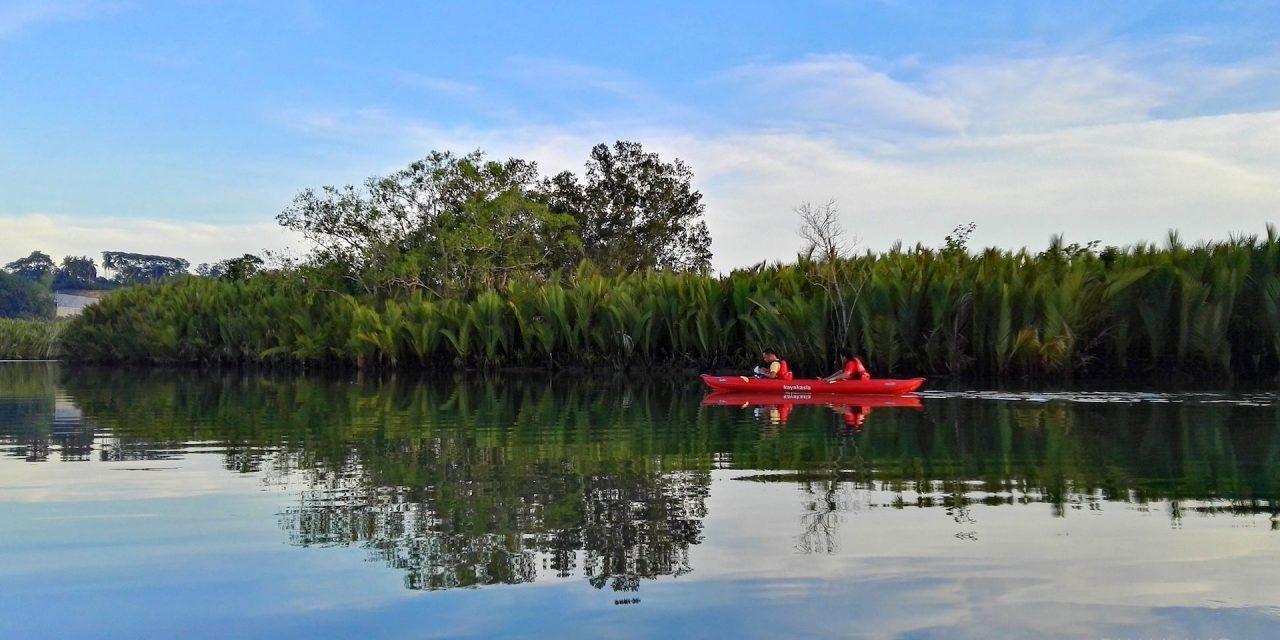 Testé par les voyageuses : Kayak nocturne sur l'île de Bohol aux Philippines