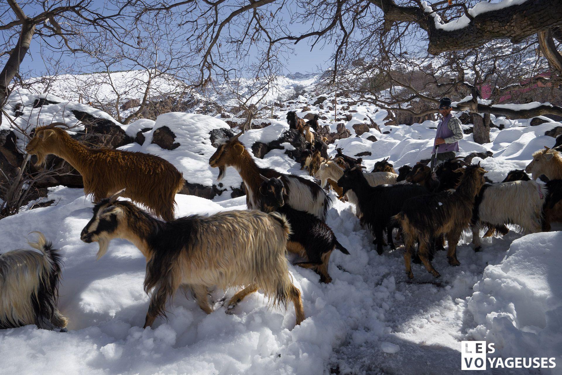 Les-voyageuses-maroc-imlil-hiver-09937