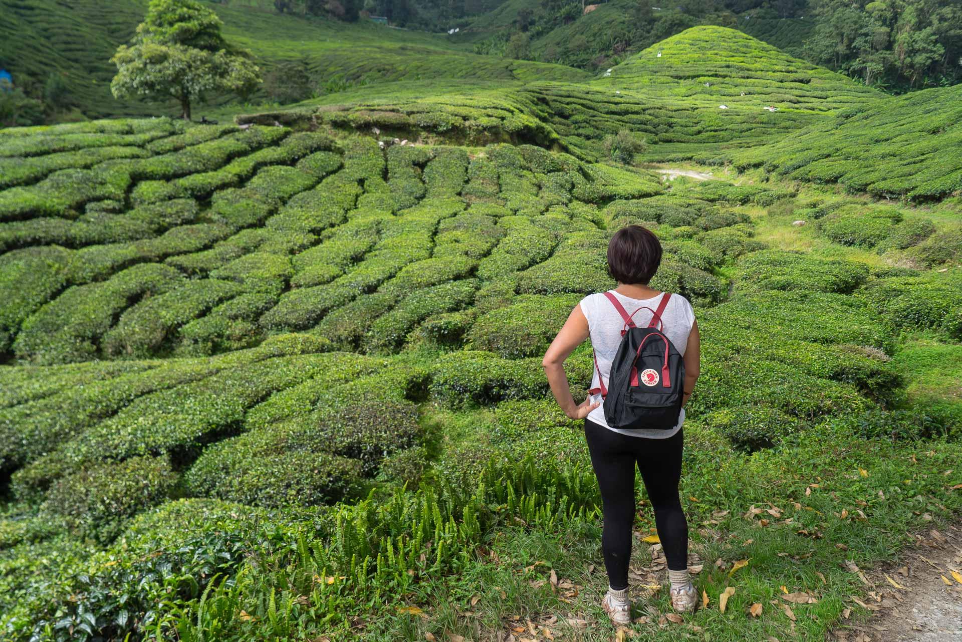 Itinéraire et budget pour voyage en Malaisie