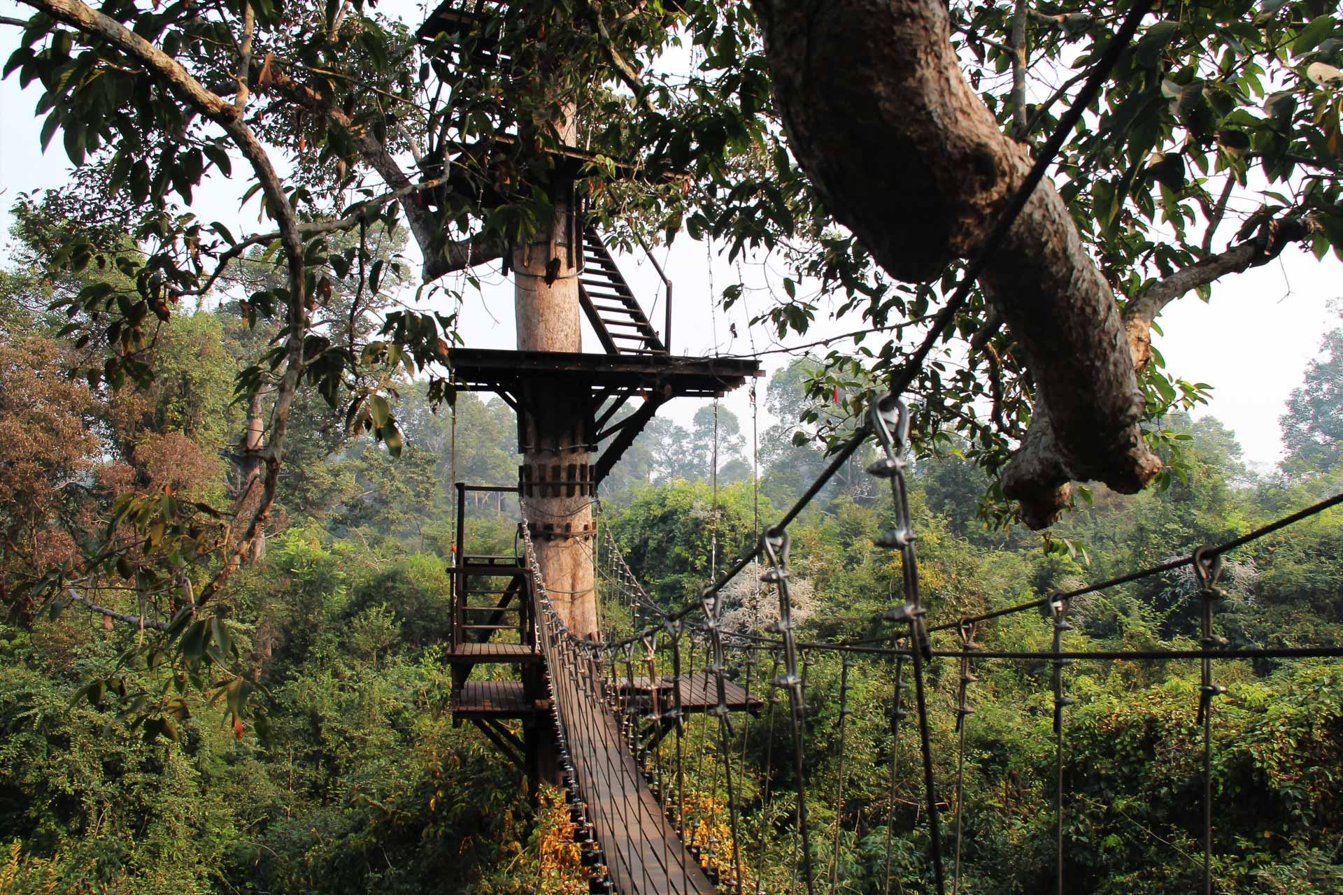 Lesvoyageuses-teste-par-les-voyageuses-tyrolienne-siem-reap-cambodge-angkor-zipline-2