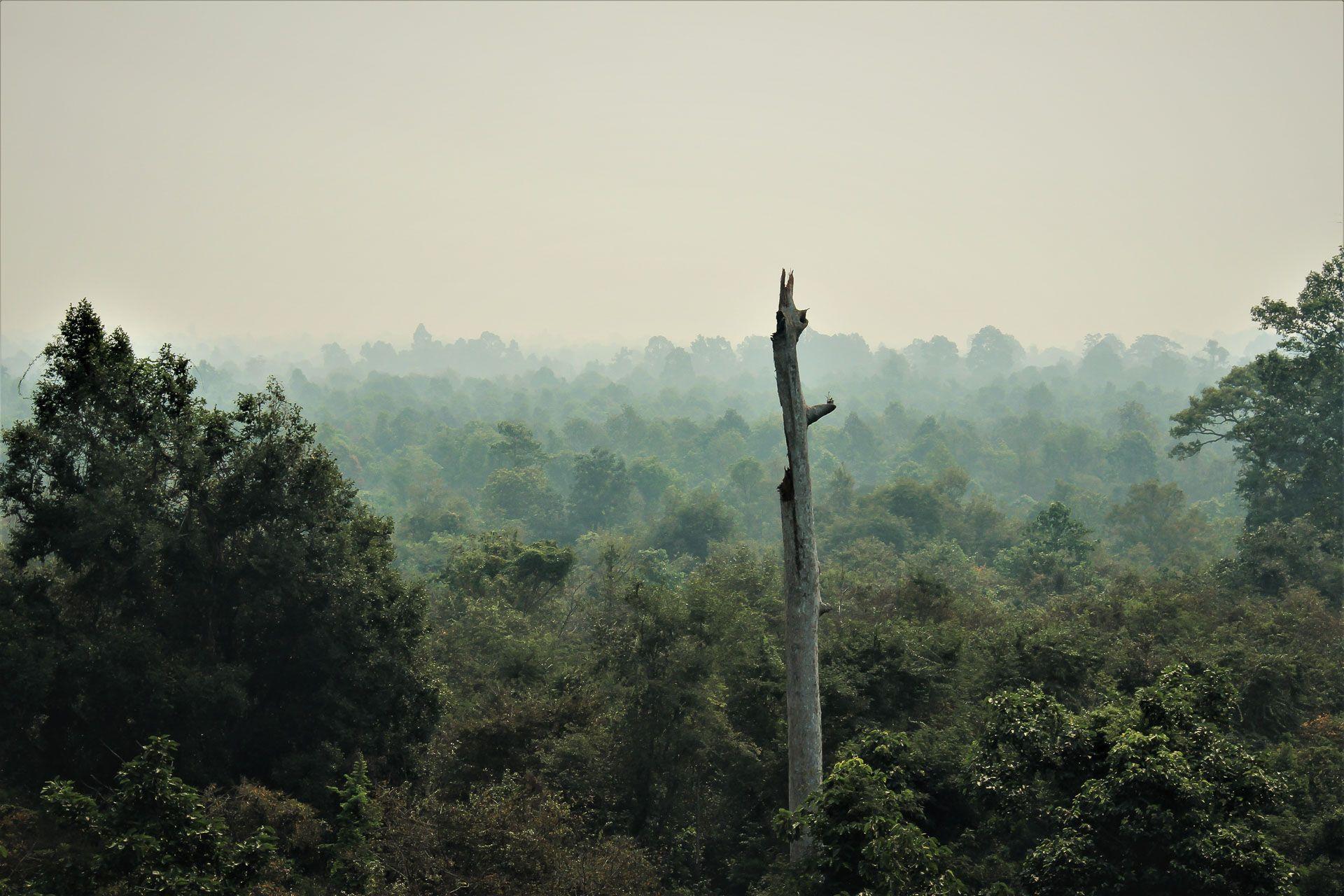 Lesvoyageuses-teste-par-les-voyageuses-tyrolienne-siem-reap-cambodge-angkor-zipline-6