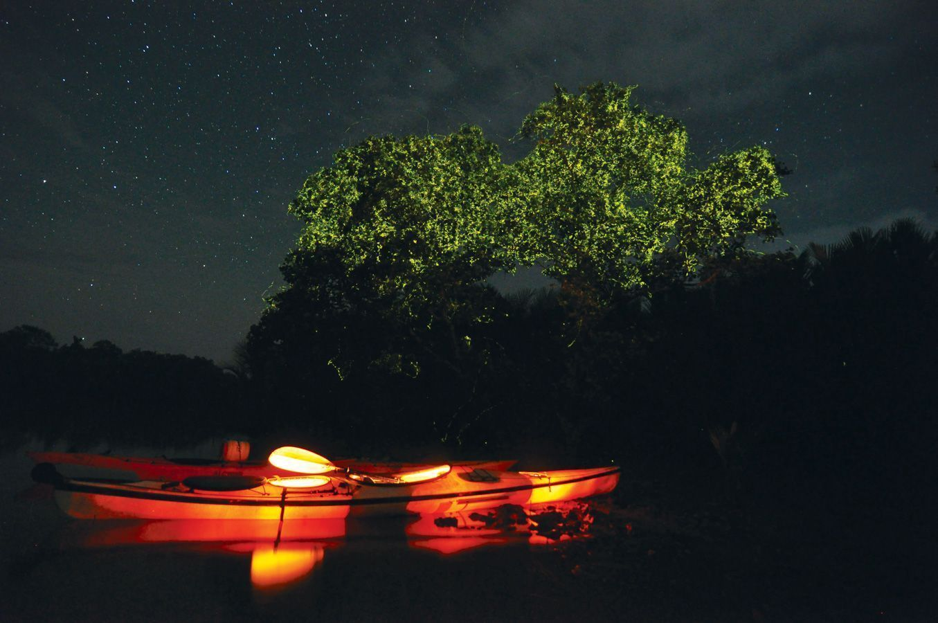 les-voyageuses-test-kayak-nocturne-lucioles-bohol-philippines3