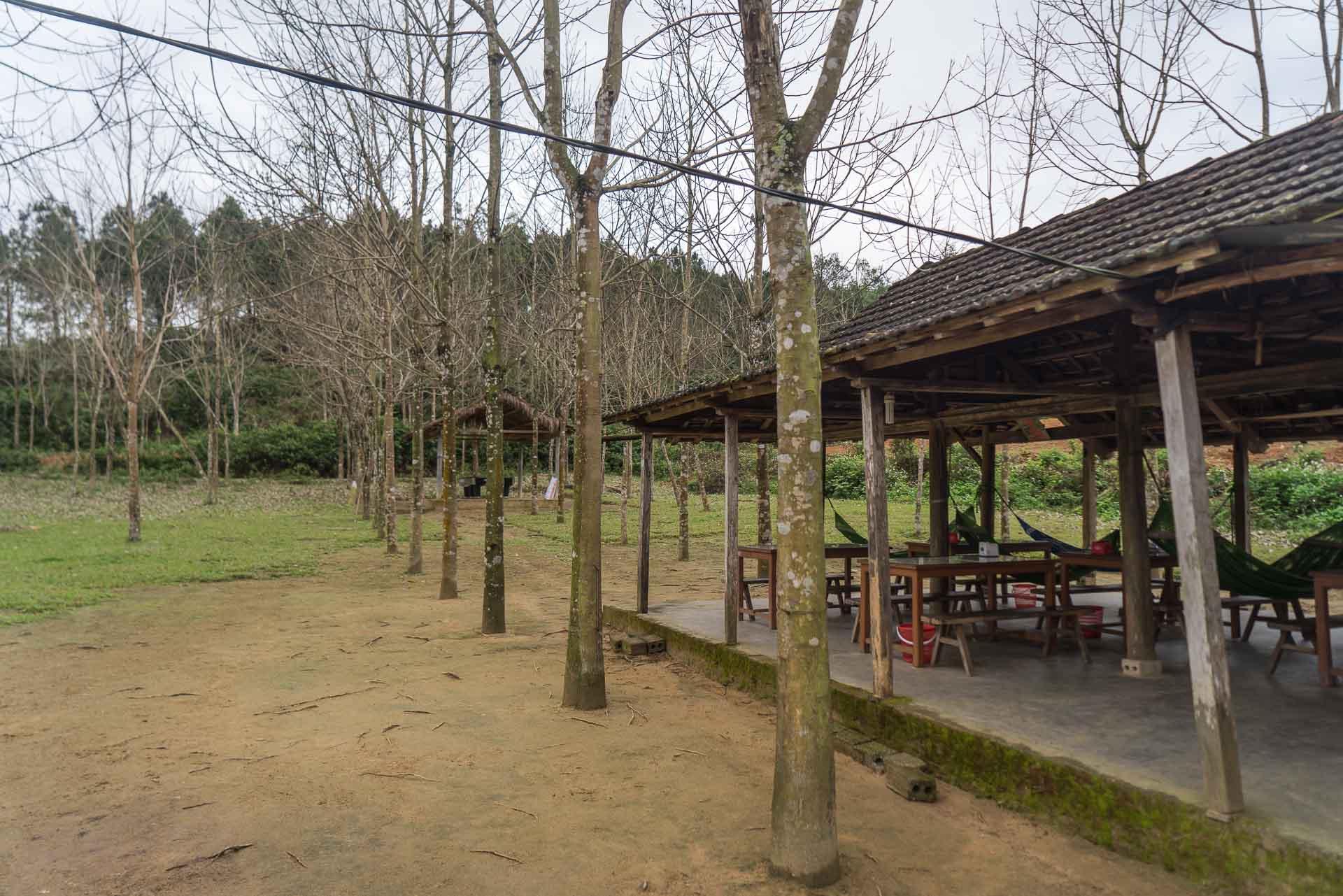 LesVoyageuses-Vietnam-Phong-Nha-Caves-Nature-100