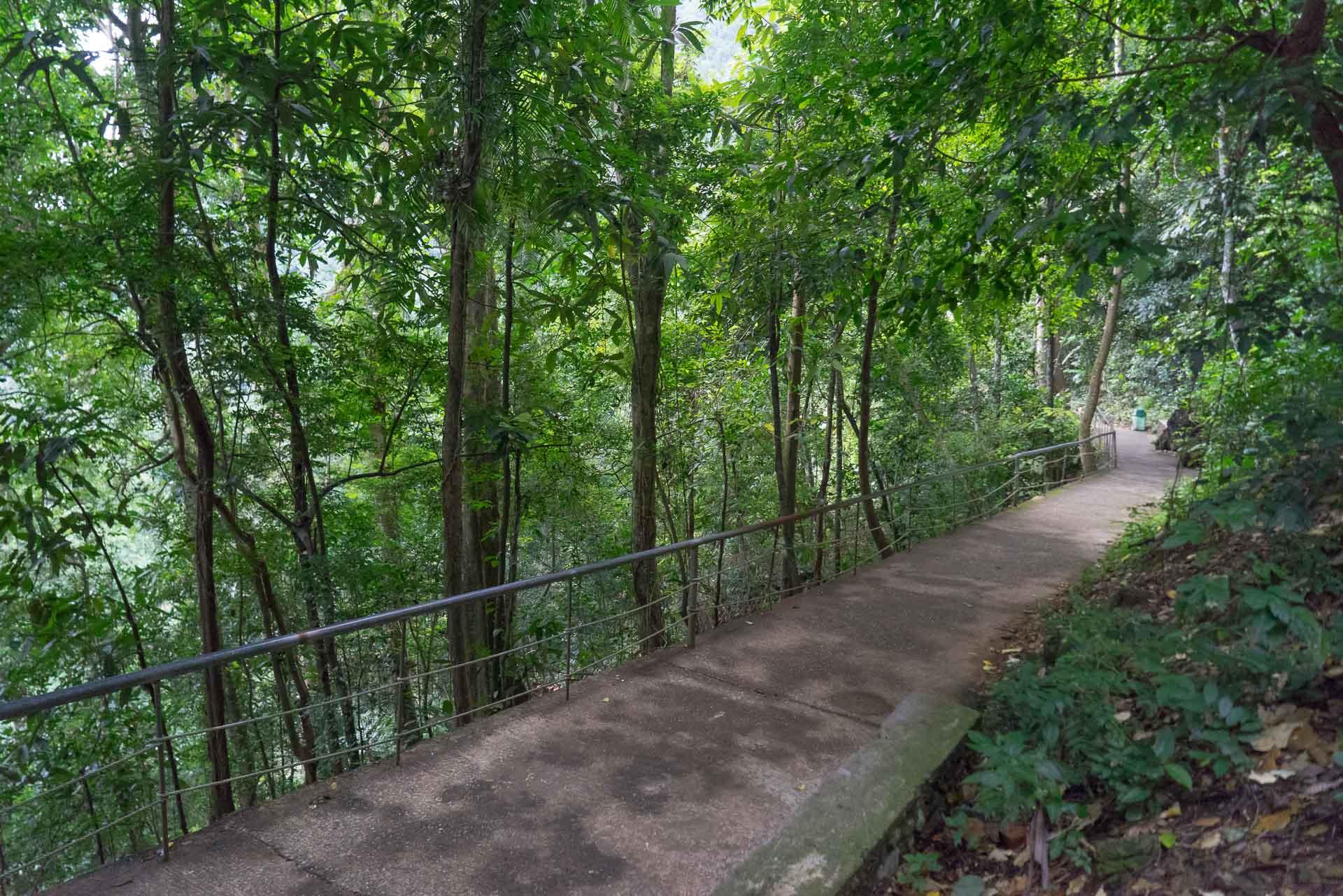 LesVoyageuses-Vietnam-Phong-Nha-Caves-Nature-20