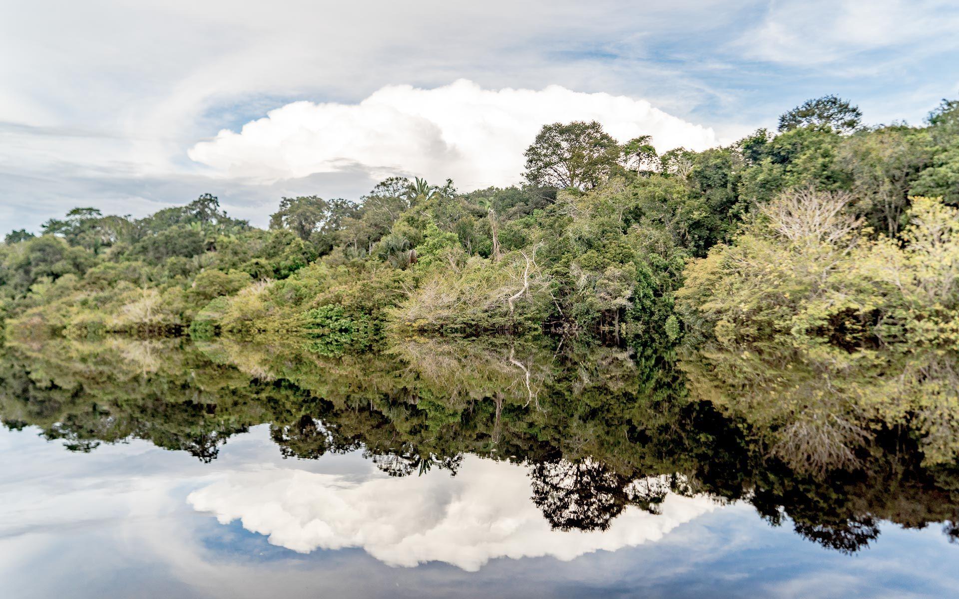 Lesvoyageuses-voyage-au-bresil-guide-conseils-amazonie-10