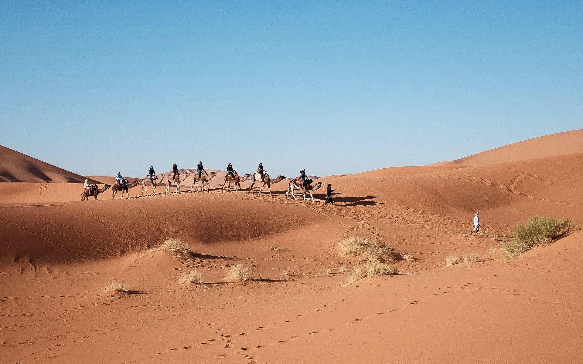 LesVoyageuses-organiser-voyage-egypte-conseils-15